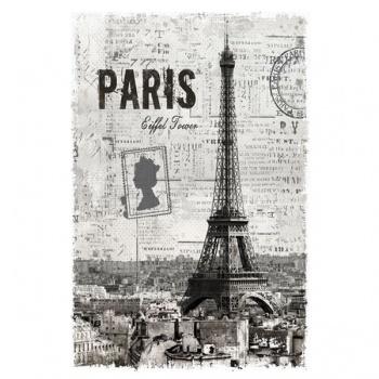 Obraz na plátně - Paris