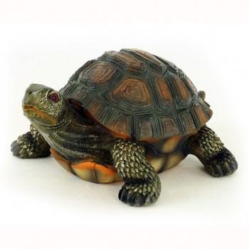 Želva Sennin Turtle