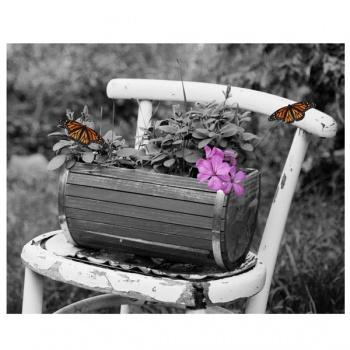 Obraz na plátně - jaro