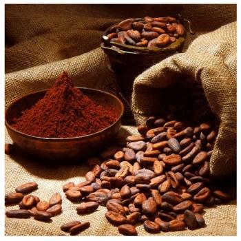Obraz na plátně - rozsypaná kávová zrna